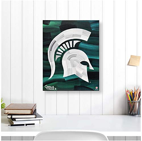 Michigan State Spartans 16