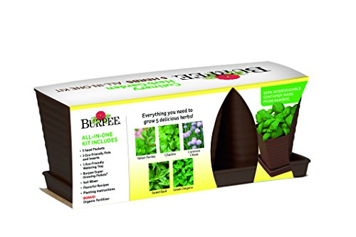 Grow 5 Herbs with Burpee's Herb Garden Starter Kit - Parsley, Cilantro, Chives, Basil and Oregano. Complete Kit with Everything Needed to Grow Culinary Plants indoors. (brown)