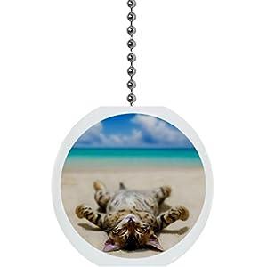 41qL7WRBD3L._SS300_ 75+ Coastal & Beach Ceiling Fan Pull Chain Ornaments For 2020