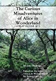The Curious Misadventures of Alice in Wonderland