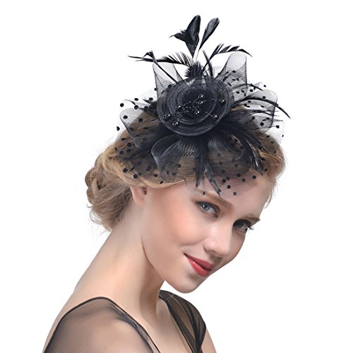 (FeiYu Crafts Penny Mesh Hat Fascinator with Mesh Ribbons and Black Feathers (A-Black))