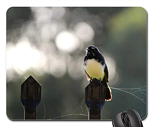 - Mouse Pads - Willy Willie Wagtail Fence Perch Perched Cobweb