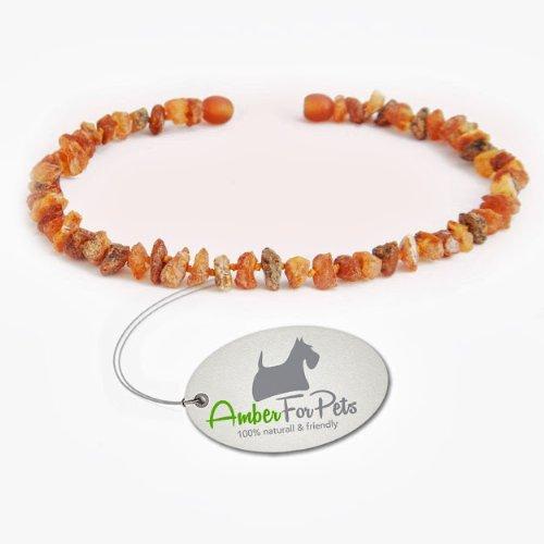 Bernstein Halsband für Hunde und Katzen Bernsteinkette Zeckenhalsband Zeckenschutz 31cm
