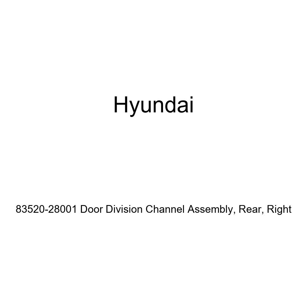 Right Rear Genuine Hyundai 83520-28001 Door Division Channel Assembly
