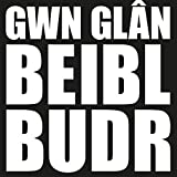Gwn Glan Beibl Budr