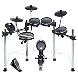 Alesis Electronic Drum Set (Surge Mesh Kit)