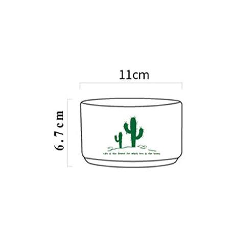 Casiz Dispensadores de cereales, para almacenamiento de taza, set ...