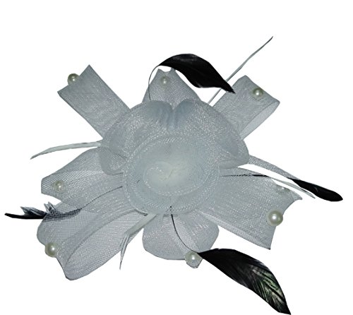 [Women's Fascinator Clip Mesh Flower Cocktail Wedding Headpiece with Faux Pearl ( White )] (Singer Fancy Dress Costumes)