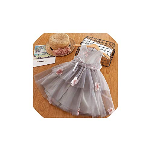 Girl Costume for Girl Clothing Princess Party Dress Ceremony 4 5 6 7 8 Years,Gray,4T]()