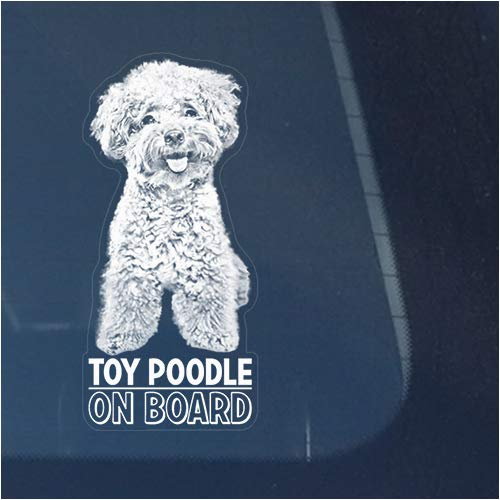 (Toy Poodle Clear Vinyl Decal Sticker for Window, Miniature Teacup Dog Sign Art Print Design)