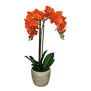 House of Silk Flowers Artificial Double-Stem Orchid in Grey Stone-Look Vase (Orange) 113