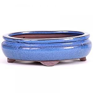 Bonsai––Cuenco ovalado (15x 11x 4,5cm, azul 15112