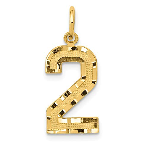 JewelrySuperMart Collection 14k Yellow Gold Diamond-Cut Number Two Charm Pendant - # 2 - Yellow Gold - - 2 Large Pendant