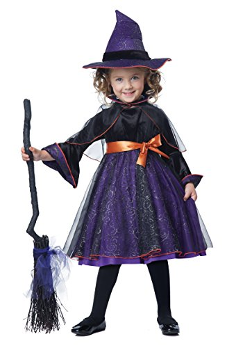 California Costumes Hocus Pocus Toddler Costume, Size 3-4 (Witch Girl Costume)