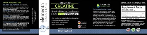 Micronized Creatine Monohydrate Powder Unflavored 300 Grams, Ultra Pure Creapure Creatine