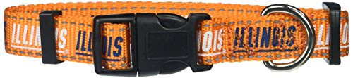 Pet Goods NCAA Illinois Illini Dog Collar, Medium