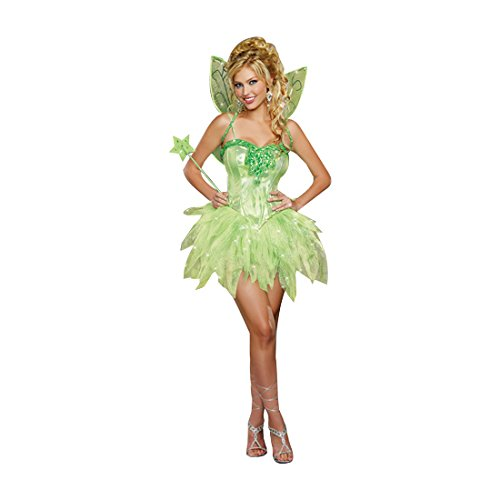 Dreamgirl Women's Fairy-Licious Costume, Green, Small