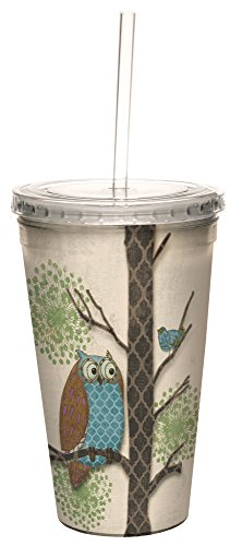 Tree-Free Greetings 35514 Paul Brent Fantasy Owls Panel I Double-Walled Cool Cup with Reusable Straw, 16-Ounce
