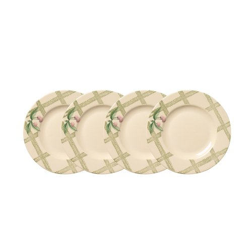 Pfaltzgraff Garden Party Salad Plate (8-1/4-Inch, Set of 4)
