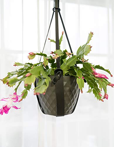 Stylish Black Hanging Planter | Hanging Leather Basket for House, Patio & Balcony | Modern Indoor, Outdoor Holders for Flower Pots & Herbs | Plant Styling Solution Window, Wall, Ceiling | Plant Decor