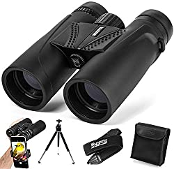 Image of the product Binoculars 10x42 | that is listed on the catalogue brand of NOPTIX.