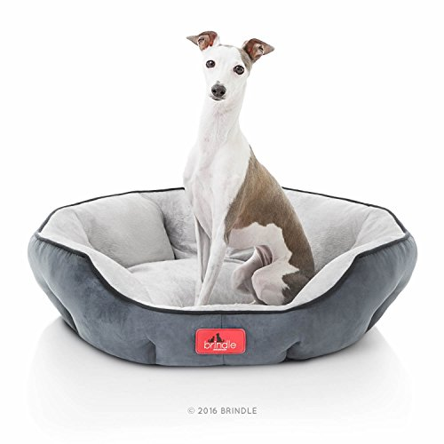 BRINDLE Washable Round Bolster Dog Bed - Gray Microsuede Pet Bed- 25 Inches (Gray Dog Dish compare prices)