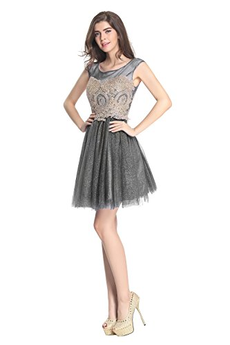Fanciest Broderie Femmes Robes Courtes Homecoming 2016 Robes De Bal Gris