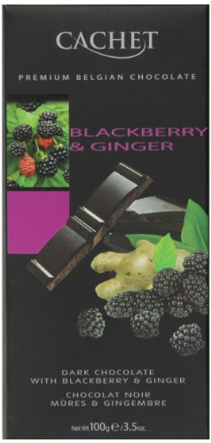 Dark Chocolate Blackberry and Ginger Bar 100g