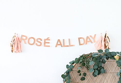 ROSÉ ALL DAY CELEBRATION BANNER by POSHAHOOLIE for bridal shower decorations, birthday party decorations, bachelorette party decorations, brosé party decorations, and more