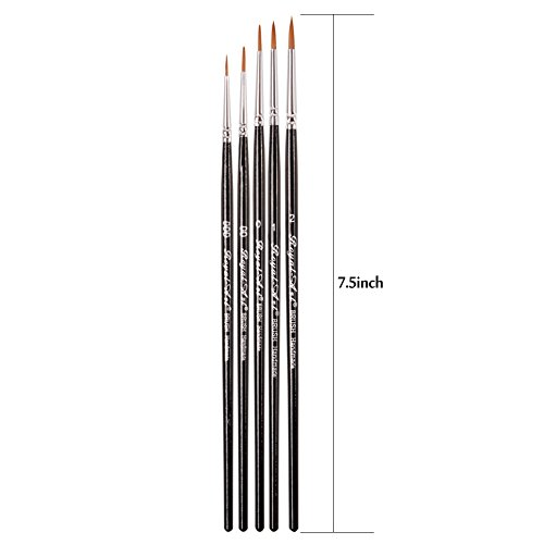 Dainayw Detail Paint Brush Set - 5 Miniature Art Brushes for Fine Detailing & Art Painting - Acrylic, Face Painting, Watercolor, Oil , Models, Nail