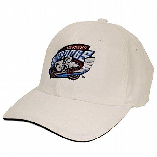 Richmond Riverdogs - Logo Adult Flexfit Baseball Cap - - Richmond Shop Hat