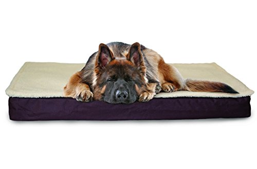 Furhaven Pet Dog Bed | Orthopedic Convertible Pet Bed Mattre