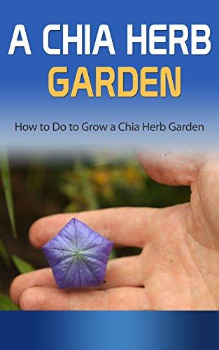 A Chia Herb Garden: How to Do to Grow a Chia Herb Garden