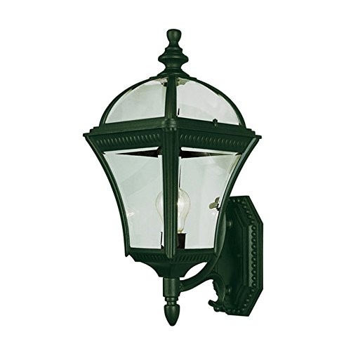 Transglobe Lighting 5083 VG Outdoor Wall Light with Beveled Glass Shade, Verde Green (Green Glass Wall)