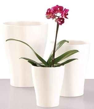 Orchideen Ubertopf 17 Cm Amazon De Garten