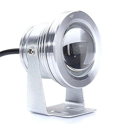 Sliver : Waterproof IP68 Aluminum LED Underwater Light 10W Marine Boat Yacht Fishing Lamp Blue Light LED Floodlight DC 12V