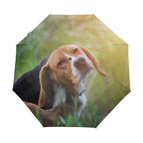 senya Saobao Windproof and Rainproof Travel Umbrella with Automatic Open and Close Folding Beagle Dog Portable Foldable Sun Rain (Imprinted Golf Umbrellas)