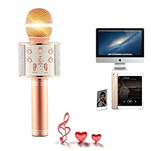 Wireless Bluetooth Karaoke Microphone - Echo & Effects Functions - Home Party Birthday - Built-in Speaker Works with Apple iPhone Android iPad LG Samsung Smartphone PC (Rose)