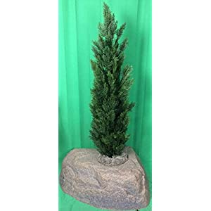 Artificial UV Rated Outdoor 5' Cedar Topiary Tree Bundled with Lg Rock Planter Cover, by Silk Tree Warehouse 75