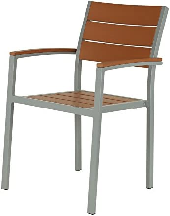 Cortesi Home CH-DC700931 Avery Aluminum Outdoor Arm Chair in Poly Resin, Silver Teak Set of 2