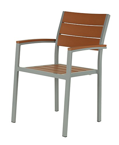 - Cortesi Home CH-DC700931 Avery Aluminum Outdoor Arm Chair In Poly Resin, Silver/Teak