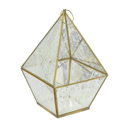 Elegant Goldtone Metal and Glass Terrarium by Generic
