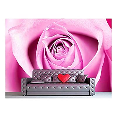 Single Rose Closeup, Crafted to Perfection, Delightful Piece