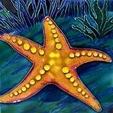 Starfish Ceramic Wall Tile 4x4 Coaster