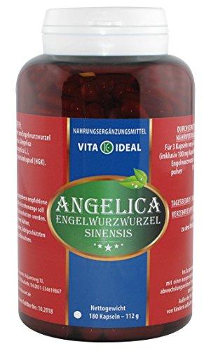 Angelica sinensis (Dong Quai, Engelwurz) 180 Kapseln je 520 mg mit rein natürlichen Pulver, ohne Zusatzstoffe