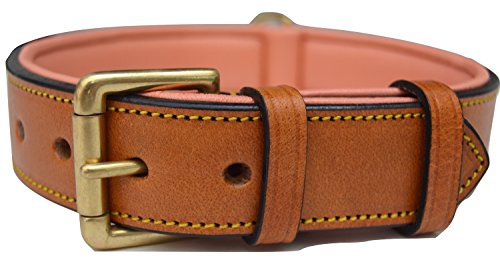 Tan Leather Collar Dog - Soft Touch Collars Leather Dog Collar with Comfort Padding,Tan and Coral, Size Large, Genuine Real Luxury Leather