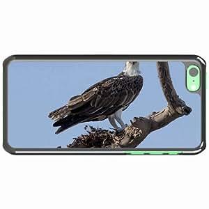 iPhone 5C Black Hardshell Case sky tree dry branch koryak Desin Images Protector Back Cover