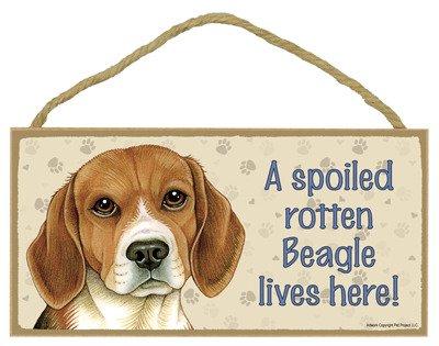 SJT ENTERPRISES, INC. A Spoiled Rotten Beagle Lives here Wood Sign Plaque 5