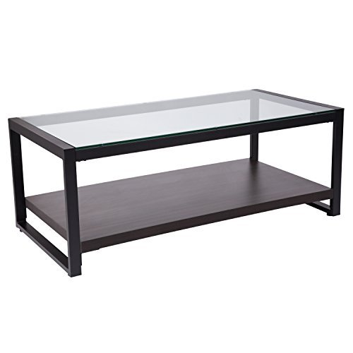 Flash Furniture Rosedale Glass Coffee Table with Black Metal