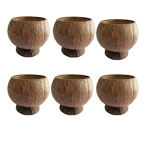 PARTYMASTER Natural Coconut Shell Cup 12oz Hawaiian Summer Luau Party Cups,6 Pack -